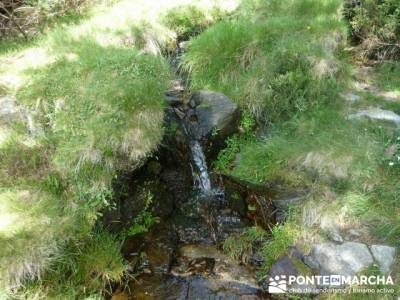 Ruta senderismo Peñalara - Parque Natural de Peñalara;
